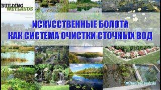 Дыхание жизни. Искусственные болота как система очистки сточных вод: миф или реальность?