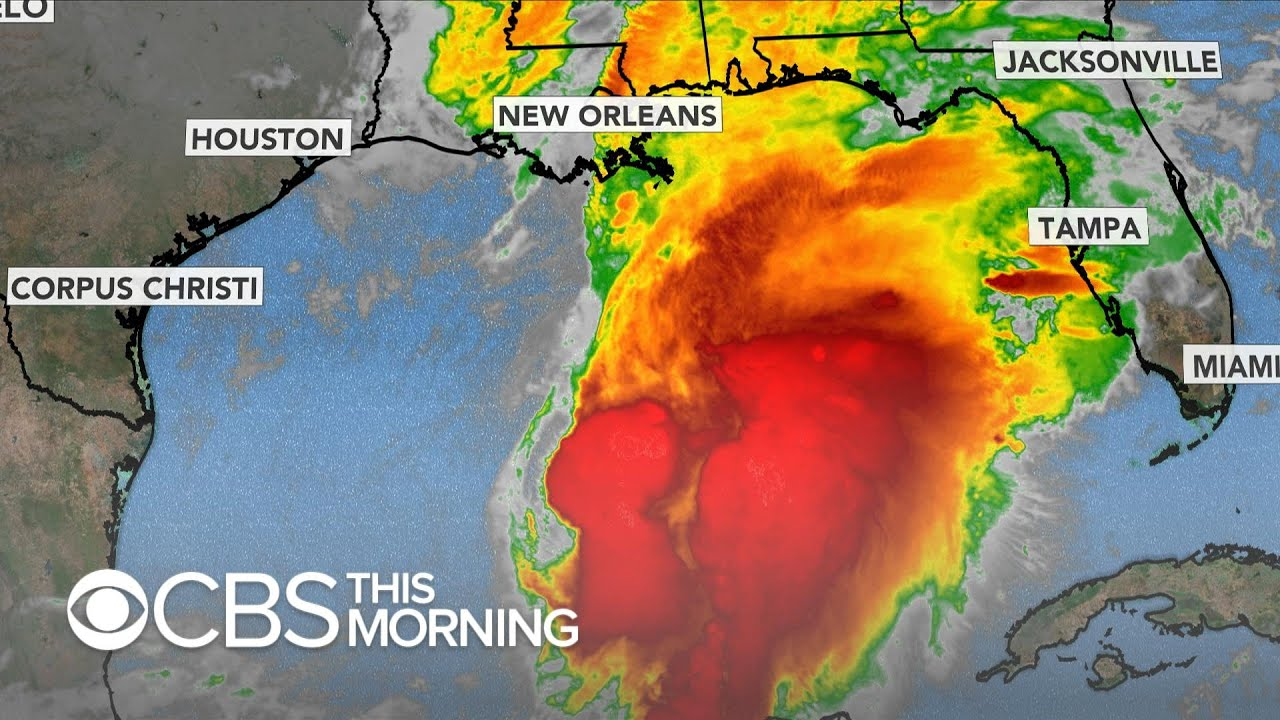 Tropical storm expected to form in Gulf Coast thumbnail