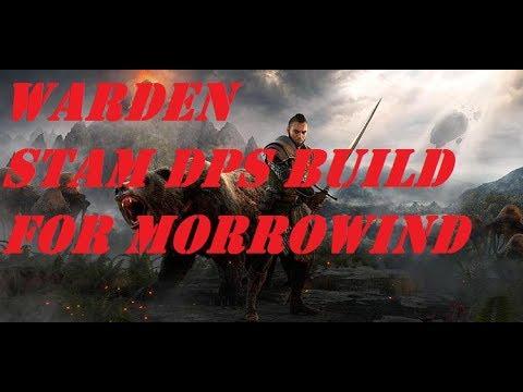 Best Stam Warden Build Eso