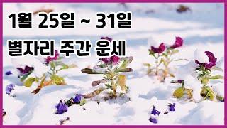 1월25일~31일 별자리 주간운세