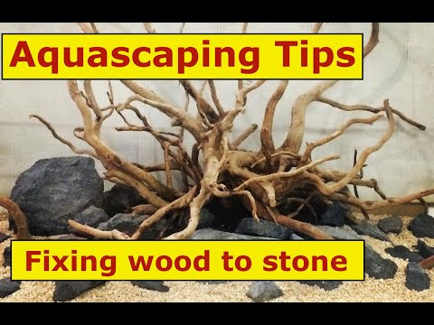 How to attach wood and stone for your Planted Aquarium? Part 1 [Aquascaping Tips]