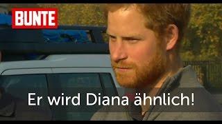 Prinz Harry - Er war Diana noch nie so ähnlich! - BUNTE TV