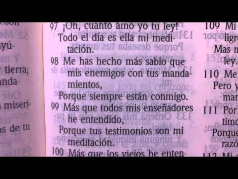 La Biblia Cristiana Leyendo Salmos Youtube