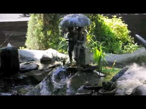 Splendor Koi And Pond Marietta Georgia