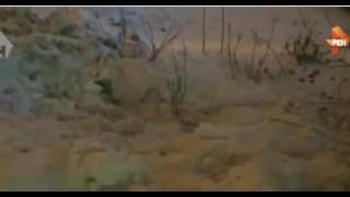 видео ГОСУДАРСТВЕННАЯ ИНСПЕКЦИЯ ПО КОНТРОЛЮ ЗА ОБЪЕКТАМИ НЕДВИЖИМОСТИ