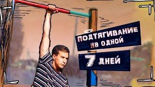 Подтягивание На Одной Руке за 7 ДНЕЙ 💪 Challenge
