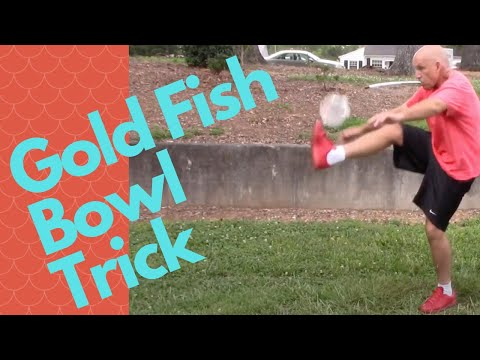 Gold fish bowl trick with rescued feeder fish