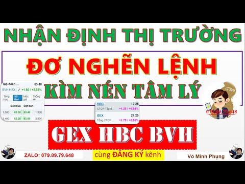 Chứng khoán hôm nay 7/4/2021 |Nhận Định Thị Trường| Cổ phiếu GEX HBC BVH tăng điểm|chungkhoanvip.com