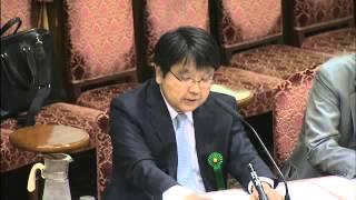 2015 09 15 参議院平和安全特別委員会「中央公聴会」