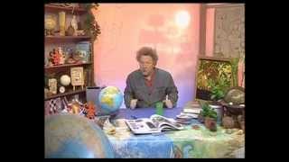 География 69. Причины цунами — Академия занимательных наук