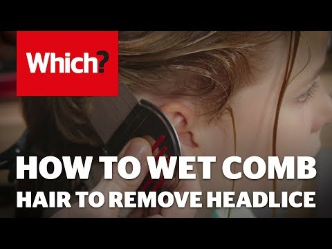 How To Wet Comb Hair To Remove Headlice