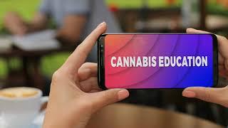 Cannabis Is Going Mainstream!