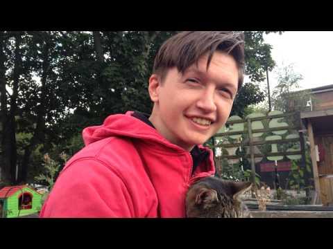 Gordon-England-Ryan Gossling