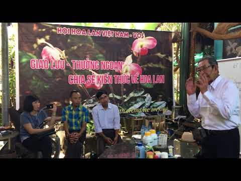 VOS - P1 - Thầy Tám Ngọc chia sẻ kinh nghiệm trồng và chăm sóc lan