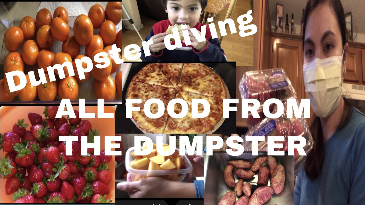 DUMPSTER DIVING/ FOUND ALL THIS FOOD IN THE DUMPSTER