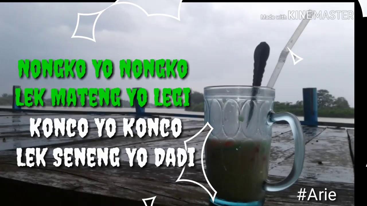 Status Whatsapp Nongko Yo Nongko Youtube