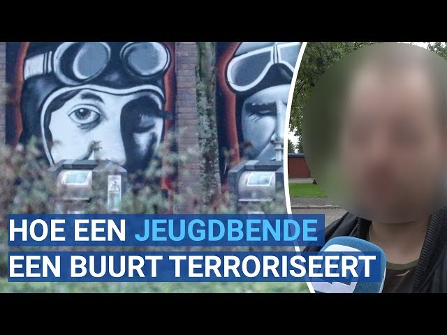 DOCUMENTAIRE: De Pilotenbende