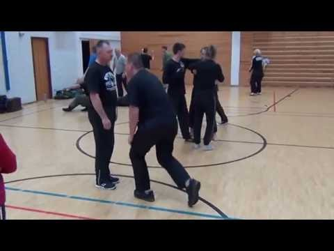 Systema Russian Martial Art - Style Solovyev  Soft work Helsinki, November 2016