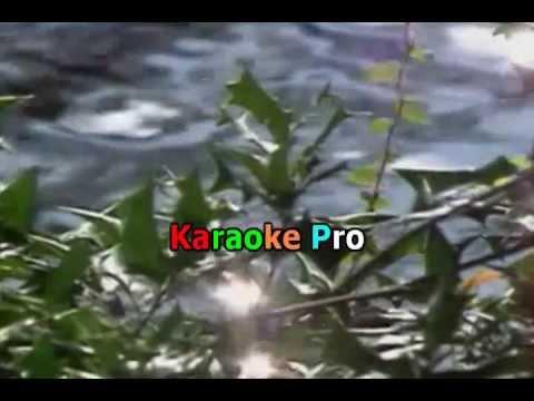 Alejandro Fernandez  & Gloria Stefan   - En el Jardin  (Karaoke Pro).wmv