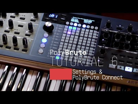 Tutorials | PolyBrute - Episode 6: Settings & PolyBrute Connect
