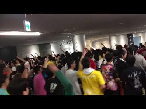 とっとこハム太郎 ANIMAX MUSIX 2017 YOKOHAMA