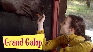 Grand Galop 221 - Un pensionnaire remuant (Partie 3) | HD | Épisode Complet