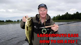 How to Catch BIG Largemouth Bass On Top with Flies!