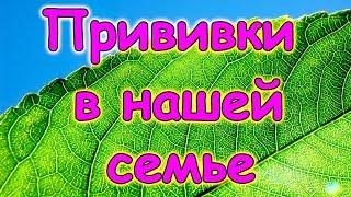 Делаем ли прививки нашим детям. (12.17г.) Семья Бровченко.