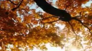 Download Hindi Video Songs - Tumi Ki Shey Ager Moto Acho Naki Onek Khani Bodle Gecho....!!!!