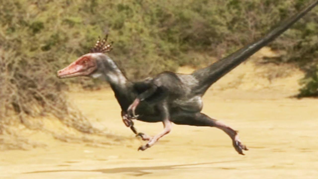 """Résultat de recherche d'images pour """"velociraptor"""""""