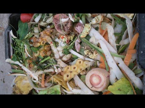 Chia sẻ cách ủ rác nhà bếp làm phân hữu cơ bón cho cây tốt cực kỳ | Khoa Hien 54