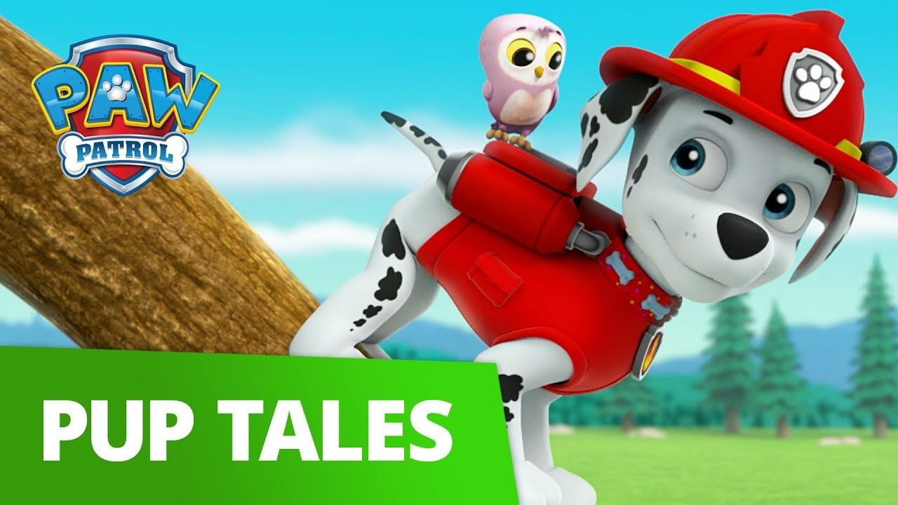 Paw Patrol  Pups Save A Lucky Collar  Rescue Episode -9791