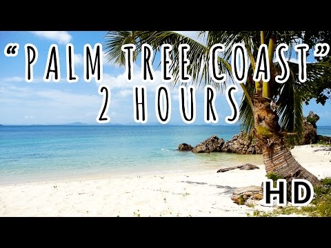 PALM TREE COAST I A Lonely Island Ocean View in Thailand I 2 HOURS 2017 (HD)