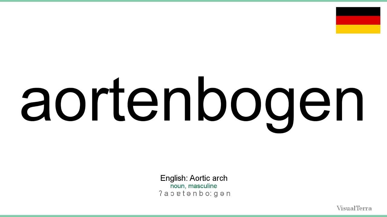 Gemütlich Aortenbogen Anatomie Ideen - Anatomie Ideen - finotti.info