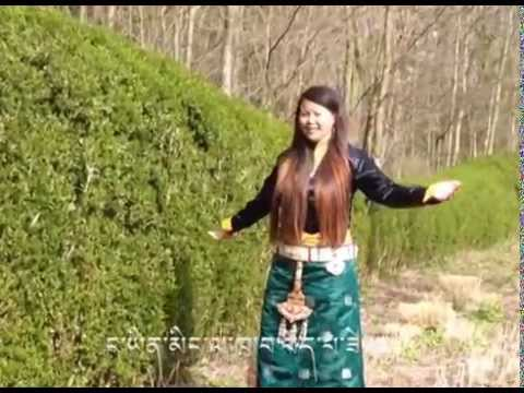 Tibetan new song 2014 choeden bopa by Tsering Lhamo ཚེ་རིང་ལྷ་མོ