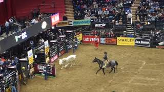 Bull riders in NY MSG Jan 7, 2018 (Part 2 Competition)