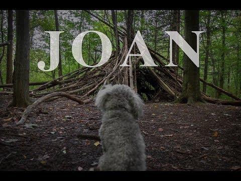 Joan short horror film
