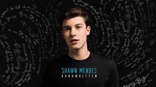 Shawn Mendes   Imagination Audio