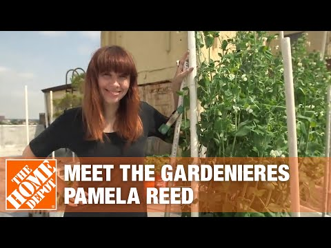 Meet the Gardenieres  Pamela Reed