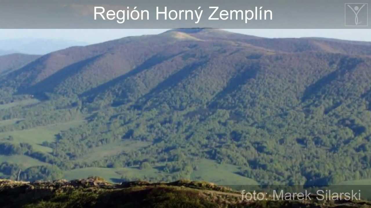 Zemplin