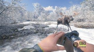 ÄLGEN ANFALLER | The Hunter: Call Of The Wild