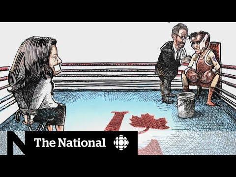 Political cartoons: Where free speech runs up against poor taste