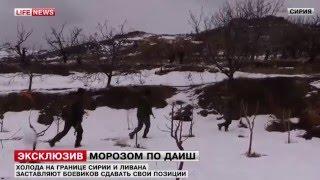 Сирия Боевики сдаются в плен, чтобы не погибнуть от холода!!!