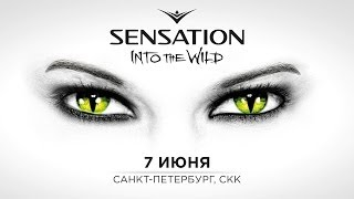 Sensation Russia 2014 'Into the Wild' trailer
