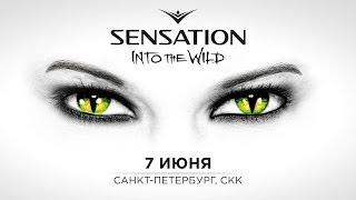 Sensation Russia 2014 'Into the Wild' trailer
