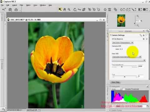 Обработка фото в программе ViewNX 2