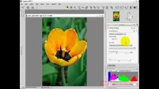 Обработка RAW файла в программе Capture NX2