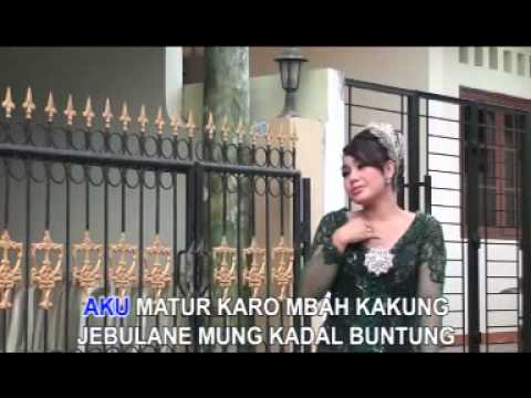 Titien Ariesta - Kadal Buntung ( Campursari)