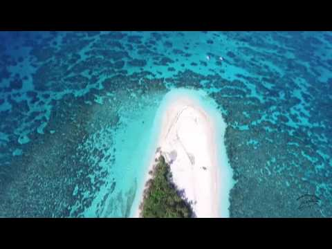 Malinoa Island of Tongatapu; Tonga by Whale Swim Safaris
