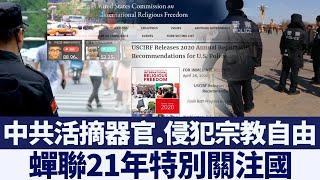 美宗教報告﹕中共繼續大規模活摘器官|新唐人亞太電視|20200501
